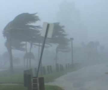 the-year-that-the-earth-went-wild. Wild Weather
