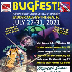 Bugfest 2021