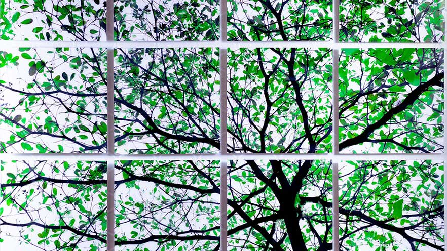 Tree Art - Contemporary