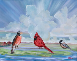 ShannonWillow_birds