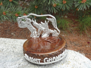 Golf Tournament Trophies -Great Bear