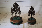 Pine Canyon Tree Trophies