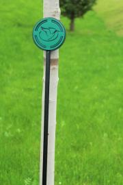 Putting Green Flagstick (green) -Reynolds Lake Oconee