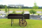 Driving Range Carts -Druid Hils