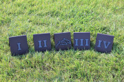 Roman Numeral Tee Markers -Twin Dolphins