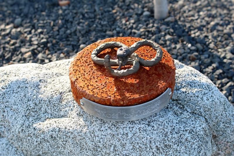 Rattlesnake Trophy -Desert Mountain