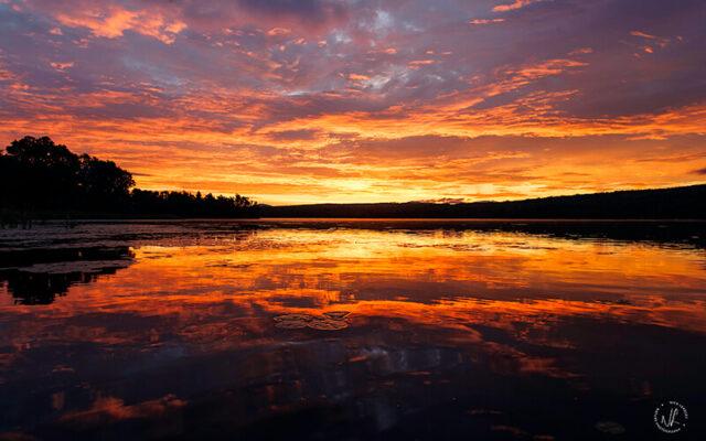 Sunrise on Haley Pond, photograph by Nick Leadley Nature Photographer.