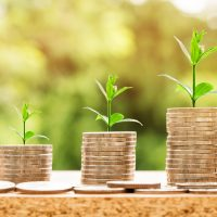 Business Investment Money Coins Currency Finance