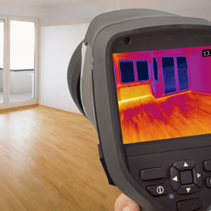 mold_inspection_los_angeles