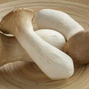 Buy King Oyster Shrooms