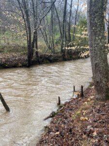 creek-muddy-at-lost-indian-camp
