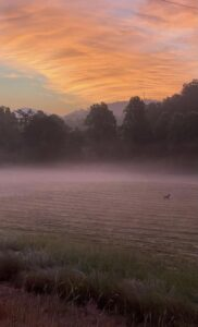 sunrise-over-pasture-lost-indian-camp
