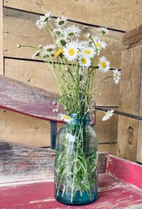 Wildflowers-Glamping at Lost Indian Camp