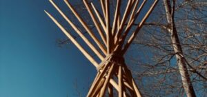 tipi-poles-lost-indian-camp