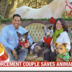 Our KRON4 Bay Area News Segment !