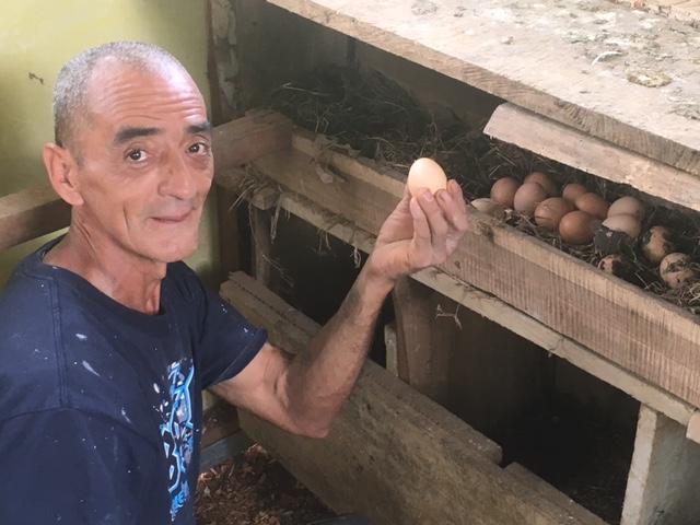 Mucho huevos!