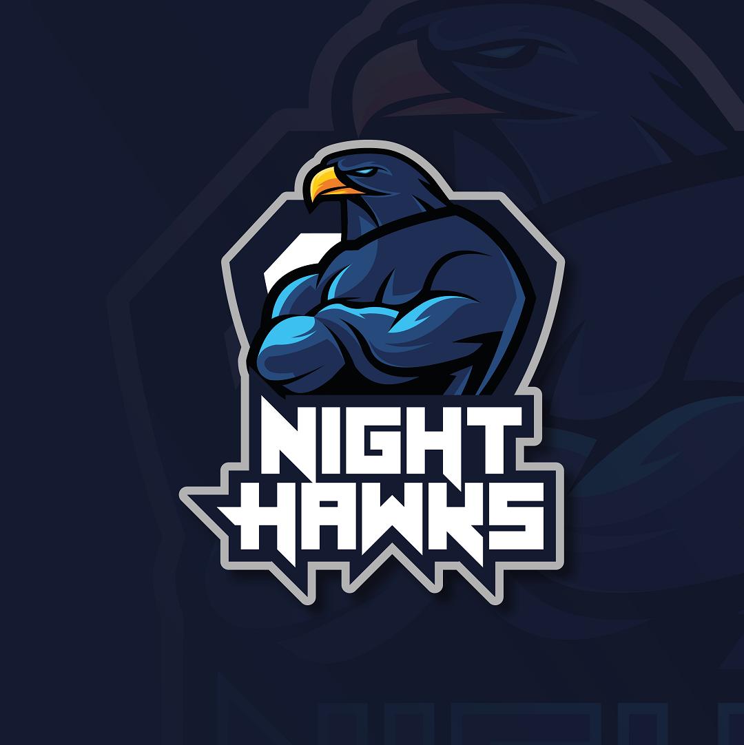 Night Hawks – Mascot Logo