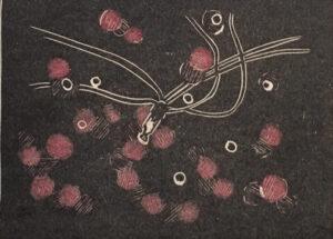 """Glasses off"" - Linocut viscosity print on paper. 12""x9"" image. Fits 15""x11"" frame"