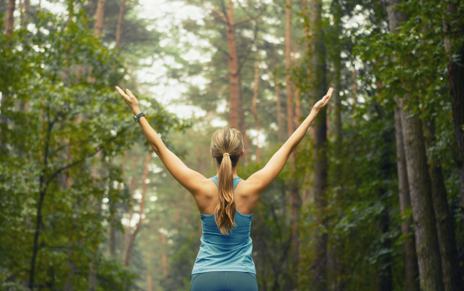 Wellness Care Is Becoming Increasingly Popular