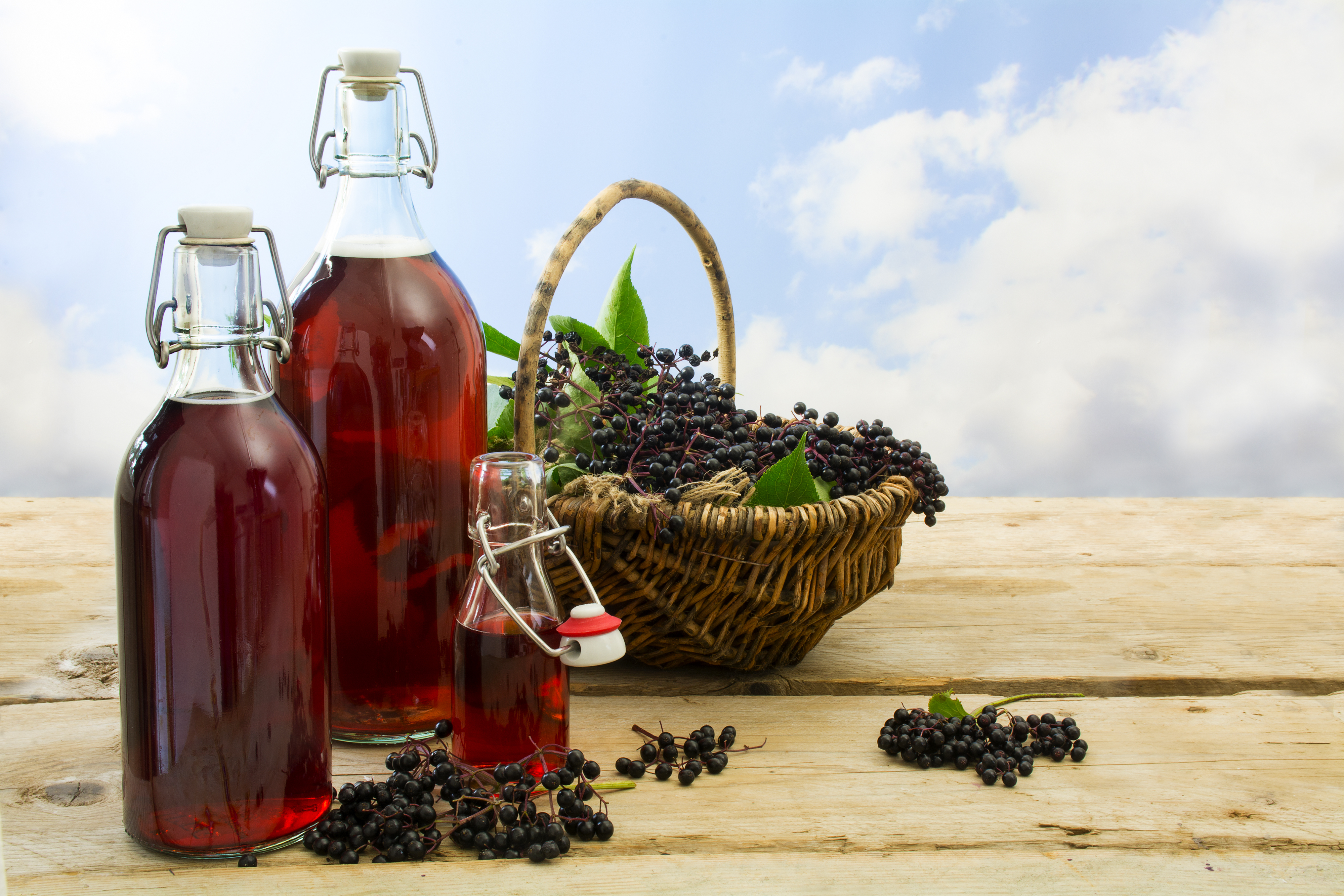 Elderberry Syrup, What's All the Hype About?