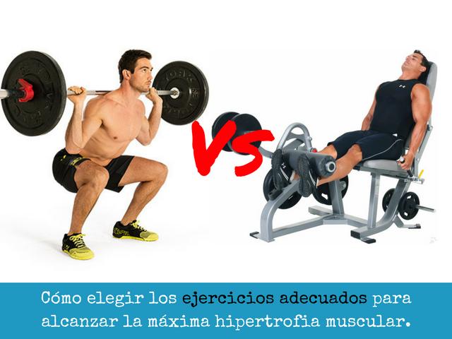 Como elegir los ejercicios adecuados para alcanzar la maxima hipertrofia muscular