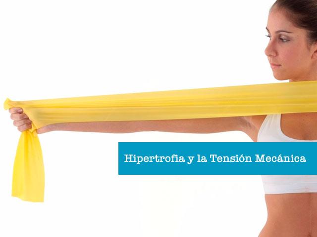 Hipertrofia-tension-mecanica
