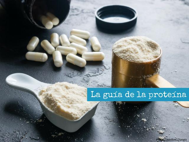 La guia de la proteina