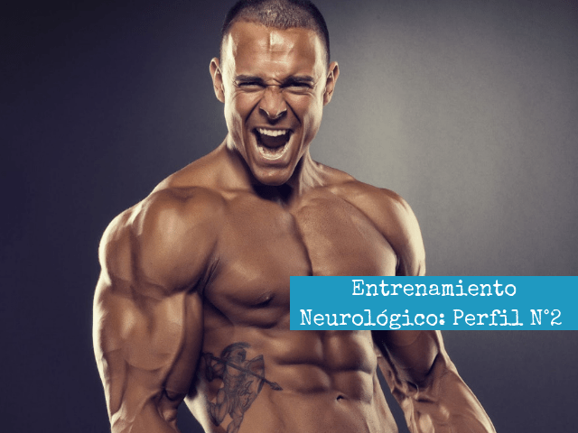 Entrenamiento Neurologico_ Perfil N°2
