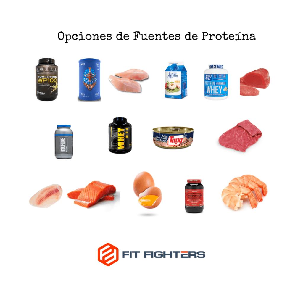 Opciones de Fuentes de Proteína