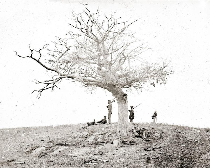 Gardner entitled this photo, 'The Lone Grave'.