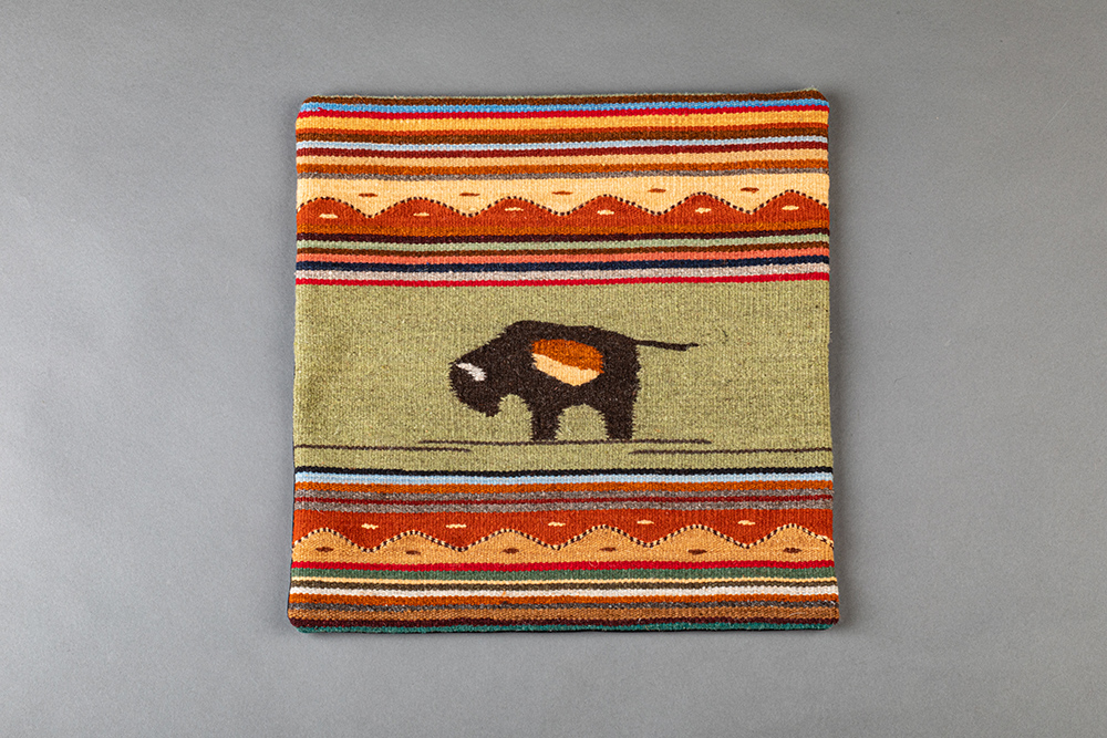 Arturo's Bison Pillow #1