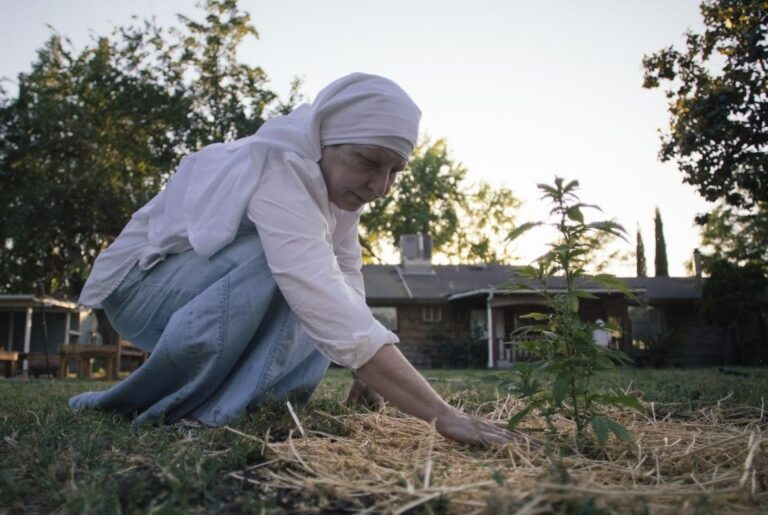 sister kate and growing cannabis plant