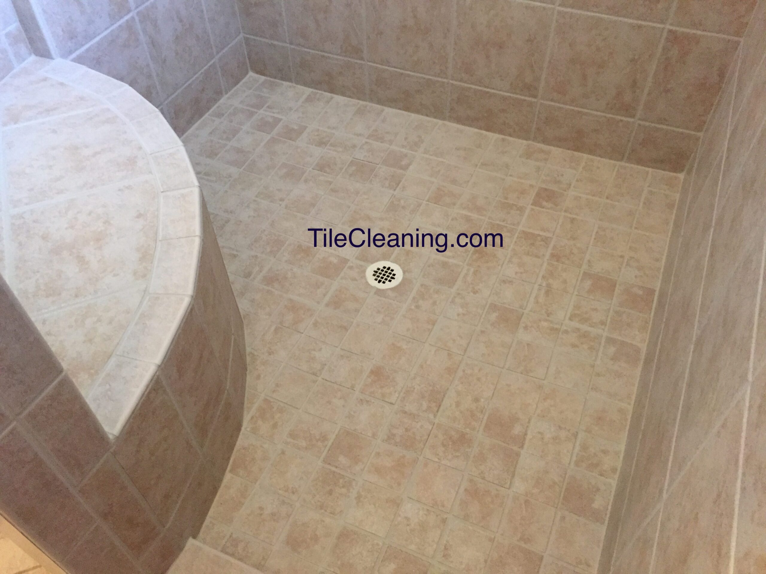 Tile Shower Before Cleaning