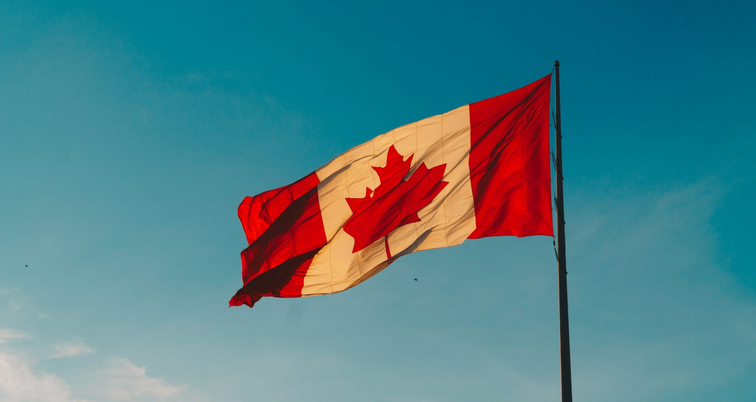 Canadian Online Pharmacy - Canada Flag - TCDS.com