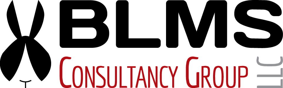 consultancy_logo_trans_963x300