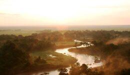 1280px-Serengeti_-_Stefan_Swanepoel