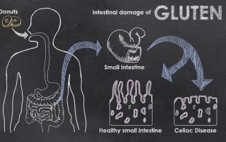 What is Gluten? Deciphering the Mystery & Meaning of Gluten