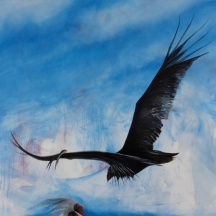 Wilu, zopilote, buzzard bird clean the earth, 2013, OIL ON CANVAS, 60 x 73 INCHES