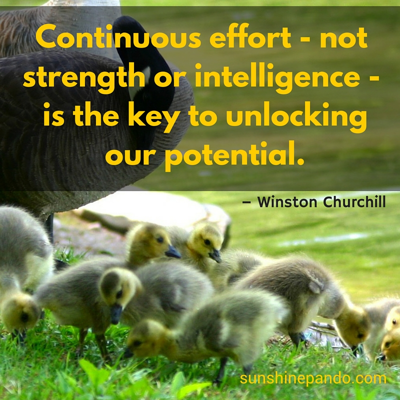 Unlock your potential with continuous effort not strength or intelligence - Sunshine Prosthetics and Orthotics