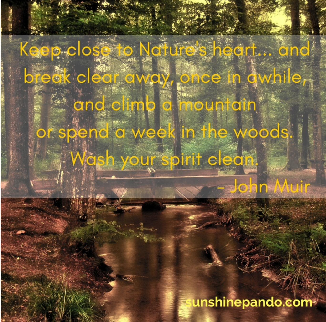 Keep close to Nature - Sunshine Prosthetics and Orthotics