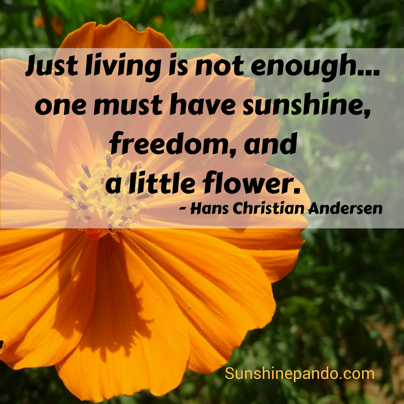 One must have sunshine, freedom and a little flower - Hans Christian Andersen - Sunshine Prosthetics and Orthotics