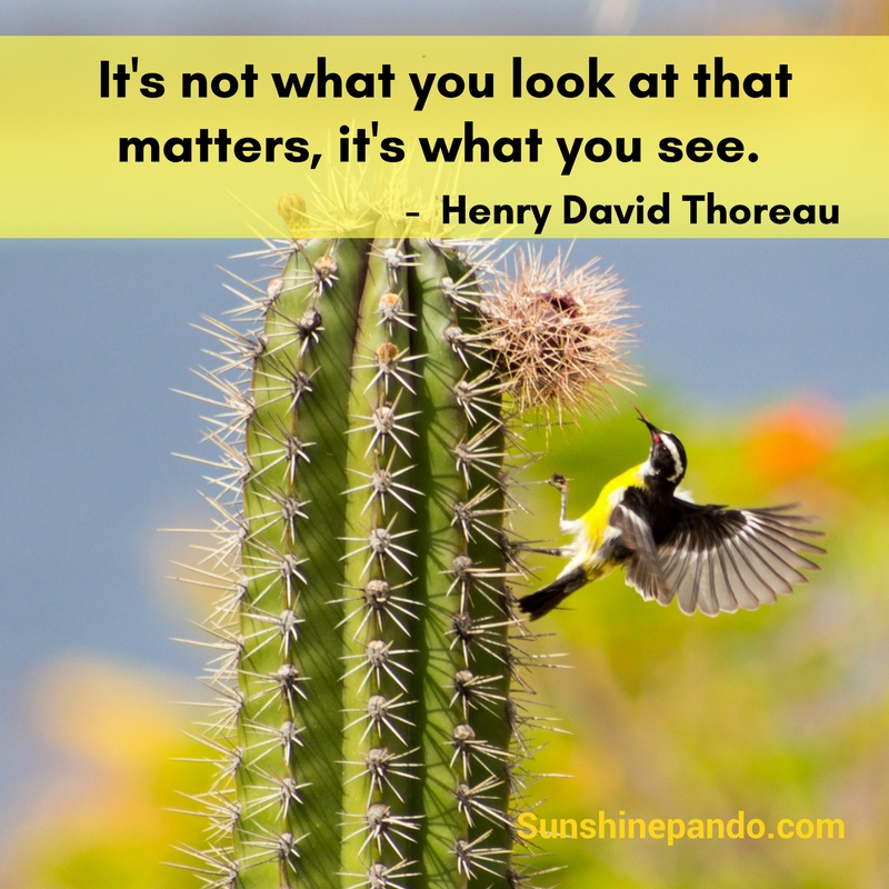 It's not what you look at, it's what you see - Sunshine Prosthetics and Orthotics