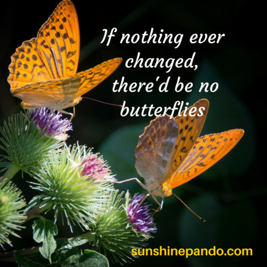 no butterflies without change  - sunshine prosthetics and orthotics