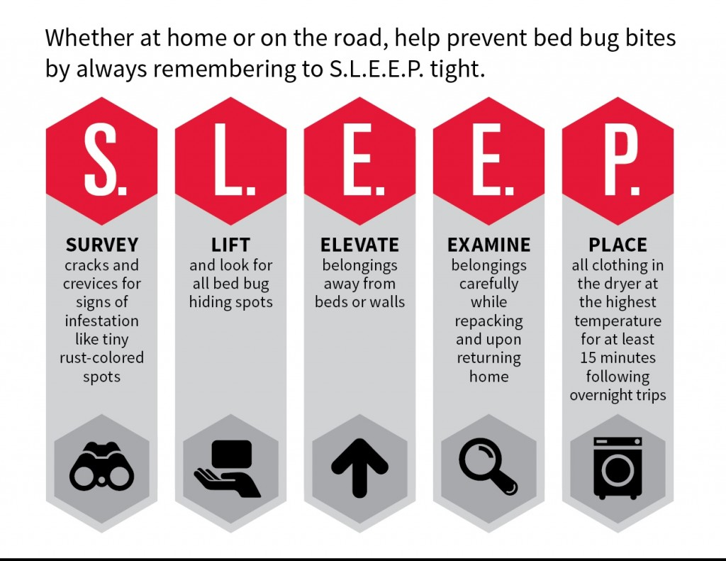 Orkin 2015 Bed Bug Infographic-midres