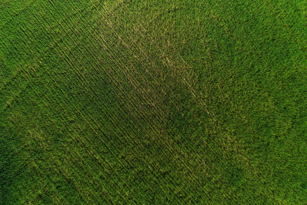 BD Ag Enterprises aerial imagery for crop fields