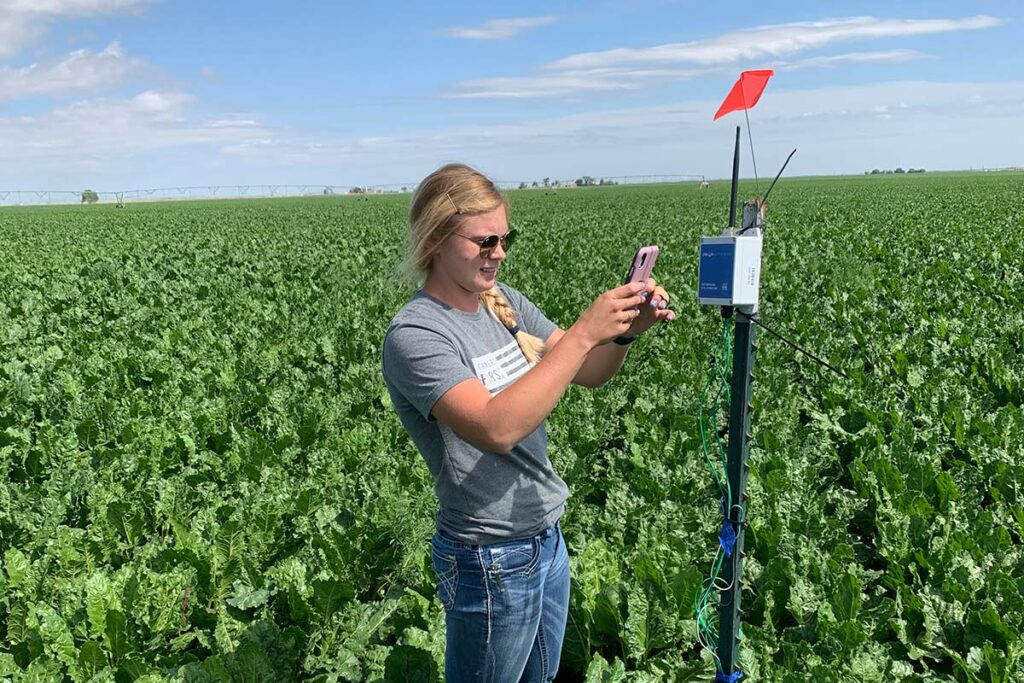 Field and moisture monitoring by BD Ag Enterprises