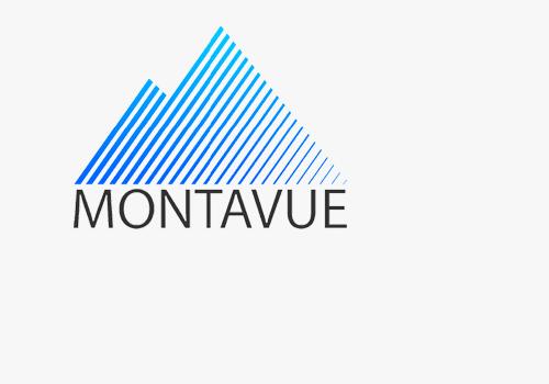 Montavue2