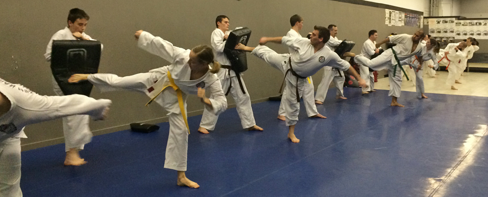 Our adult karate program aims to develop fitness and self defense.