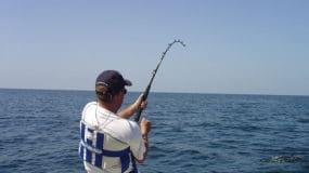 When Is Deep Sea Fishing Season