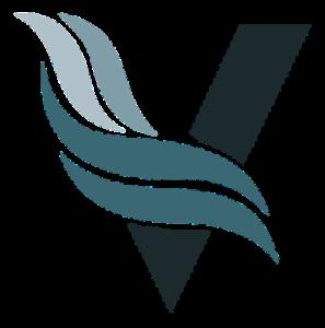 Color V Logo